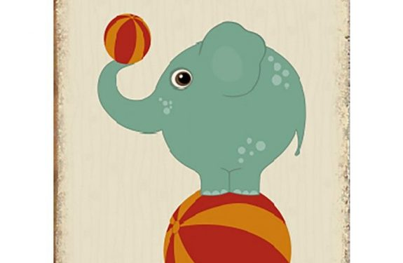 Vídeo elefante del circo